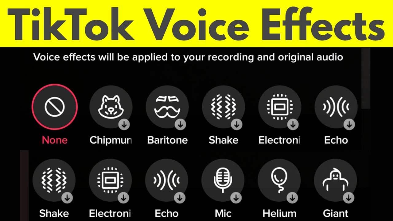 Pengubah-Suara-atau-Voice-Changer