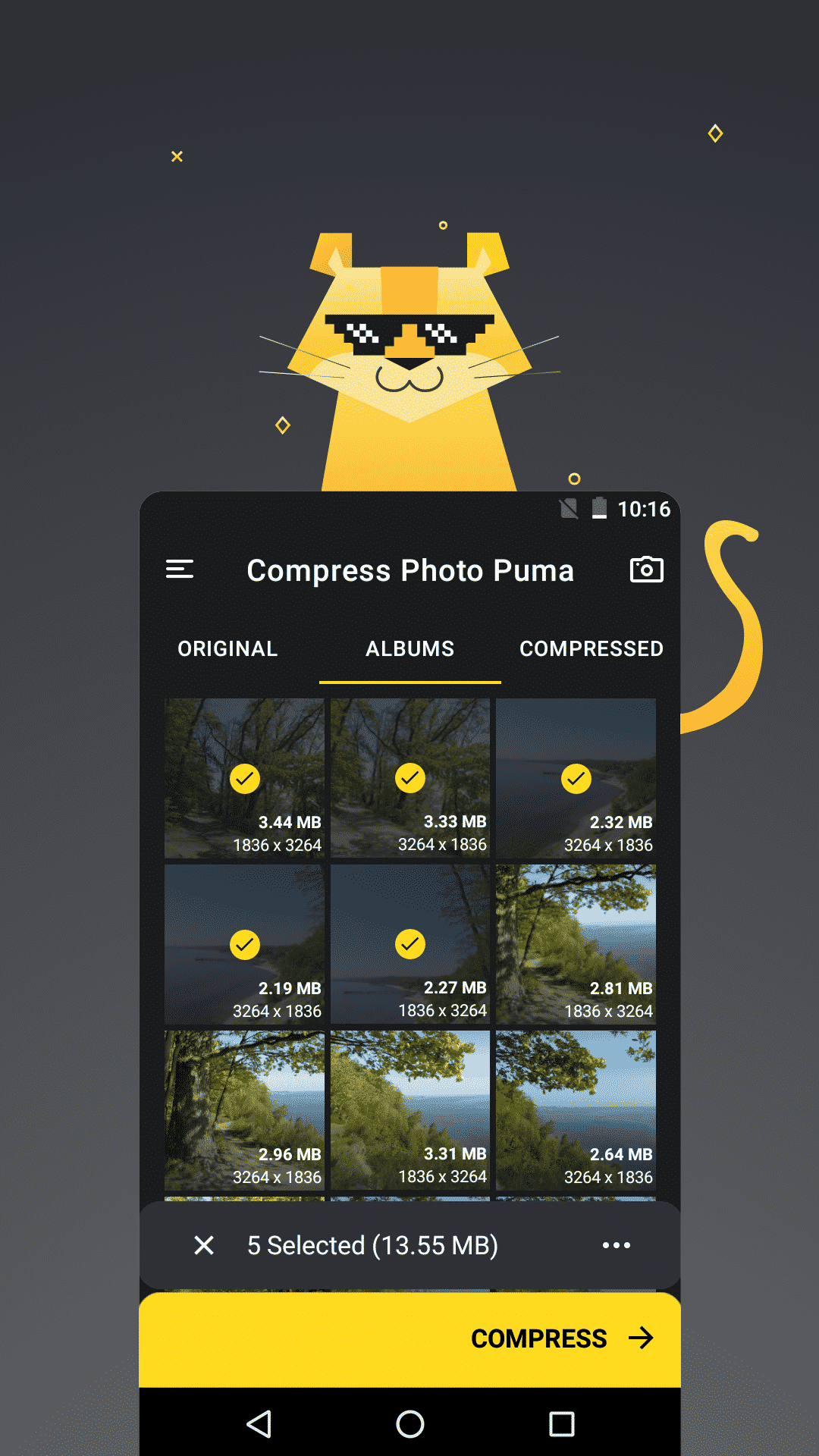 Puma-Image-Compressor